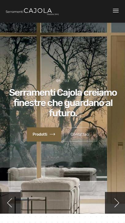 realizzazione siti web professionali Mantova